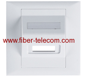 2 port Faceplate for Fiber Optic Adaptor 86*86mm
