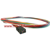12 Fiber SM Multi Color Fiber Pigtails